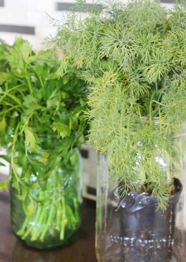Herbs always look pretty. If I had an Ina Garten budget I would have them in my kitchen all the time, whether I needed to cook with them or not. I forget to water things, so it would be a costly decor item.
